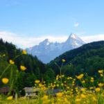Blick zum Watzmannmassiv © Gipfelfieber.com
