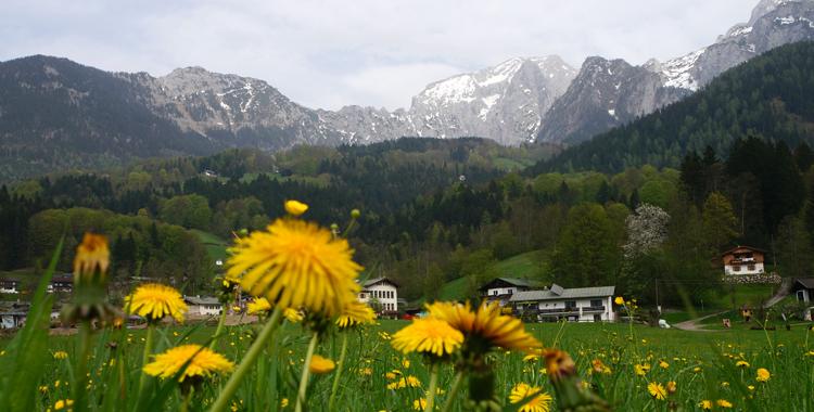 Frühlingsgefühle am Kehlstein © Gipfelfieber.com