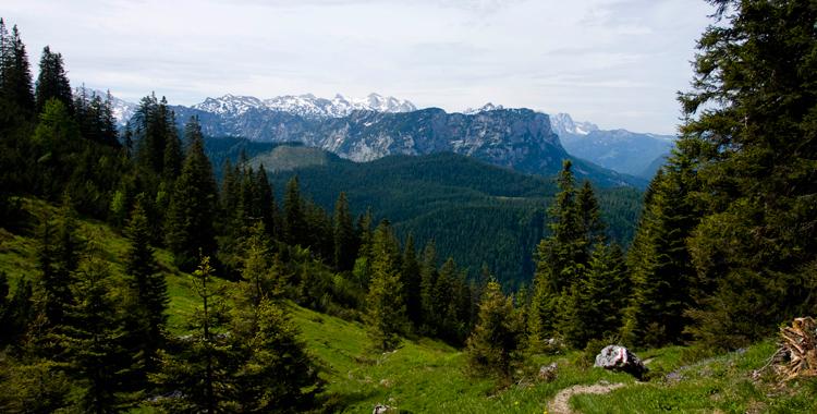 Unterwegs im Lattengebirge (1) - Der Waxriessteig zum Predigstuhl© Gipfelfieber.com
