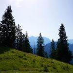 Blick in Richtung der Zugspitze © Gipfelfieber.com