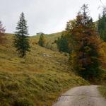 Blick auf die Tanner-Alm © Gipfelfieber.com