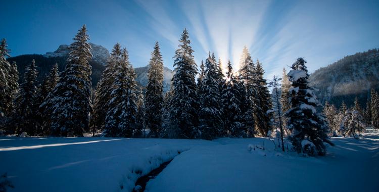 Schneeschuhwanderung zur Röthelmoosalm © Gipfelfieber.com