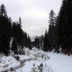 Langsam ansteigender Forstweg © Gipfelfieber.com