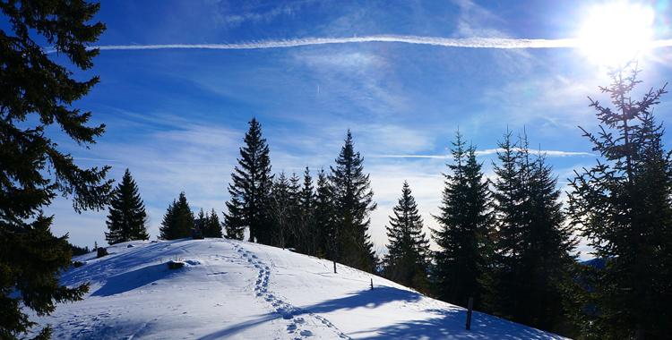 Über die Gufferthütte auf die Halserspitz © Gipfelfieber.com
