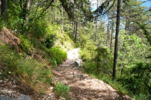 Der Zustiegsweg nach der Bastion © Gipfelfieber.com