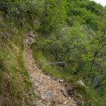 Der Abstiegsweg 418 © Gipfelfieber.com