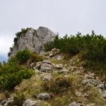 Die letzte Kuppe vorm Gipfel © Gipfelfieber.com