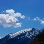 Steinadler über dem Watzmann © Gipfelfieber.com