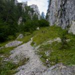 Steiler Abstieg zur Röthelmoosalm © Gipfelfieber.com