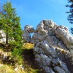 Felsen am Fockenstein © auf-den-berg.de