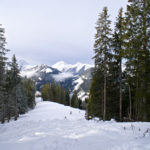Der Aufstieg erfolgt durch eine breite Waldschneise © Gipfelfieber.com