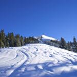 Der Aufstieg mit dem Gipfel vom Joch im Blick © Gipfelfieber.com
