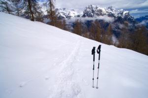 Auch im Winter ein guter Begleiter © Gipfelfieber.com