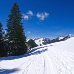 Blick zurück zu Bodenschneid und Brecherspitze © Gipfelfieber.com