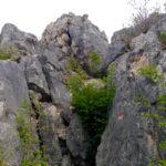 Der Fausto Susatti schlängelt sich den Fels hinauf © Gipfelfieber.com