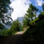 Aufstieg über Forstwege © Gipfelfieber.com