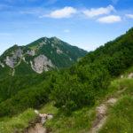 Blick zurück zum Feldberg © Gipfelfieber.com