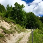 Breiter Weg zu Beginn © Gipfelfieber.com