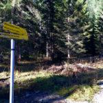 Richtung Hohenschwangau © Gipfelfieber.com