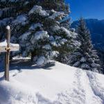 Am kleinen Gipfelkreuz ©Gipfelfieber