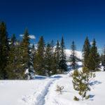 Am Gipfel ©Gipfelfieber