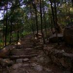Die ersten Stufen ©Gipfelfieber