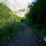 Zunächst im Wald ©Gipfelfieber