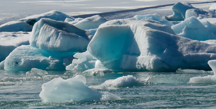 Die Antarktis: Leben als Abenteuer ©Gipfelfieber