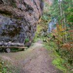 Der Weg führt vorbei am Fels ©Gipfelfieber