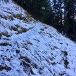 Schneeüberbleibsel ©Gipfelfieber