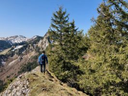 Luftige Runde am Grat: Über Zellerhorn und Zellerwand zum Laubenstein ©Gipfelfieber