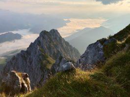 Jovenspitze: Einsames Gipfelglück im Zahmen Kaiser ©Gipfelfieber